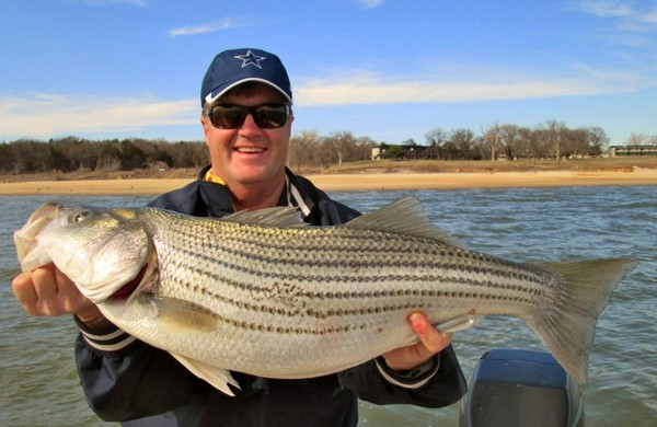 Randy Parks from Carrollton Tx with 14lb 14oz Texoma striper. Catch Picture Release